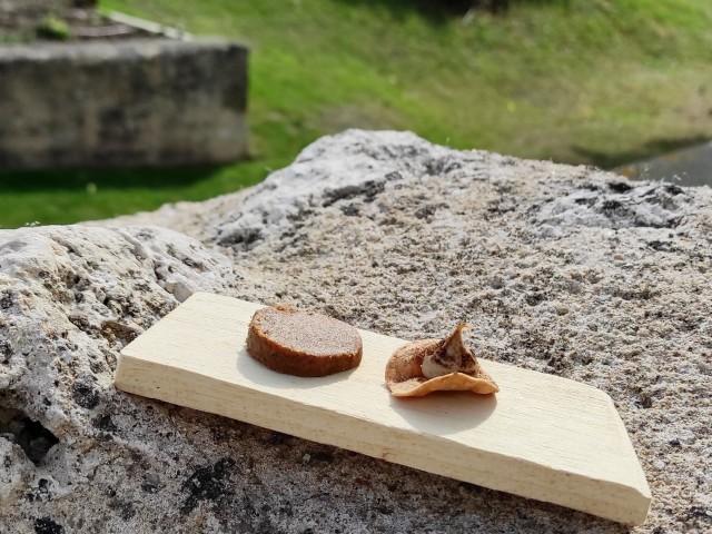 La Table du Prieuré Le pain sec : Sablé à la farine de pain, pain toasté à notre façon